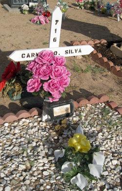 Carmen Pola <i>Olivas</i> Silva