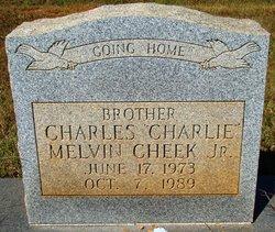 Charles Melvin Charlie Cheek, Jr