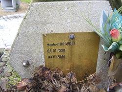 Amber DeWolf
