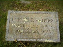Gypson T. Watkins