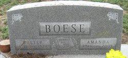 Amanda Anastasia <i>Schmidt</i> Boese