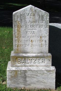 Dr Herman Baltzer