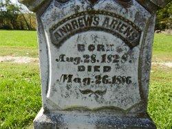Andrew Ariens