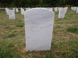 Mary Ann <i>Kearney</i> Cheney
