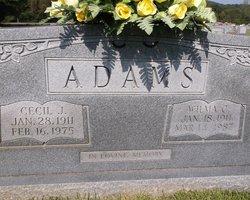 Cecil John Adams