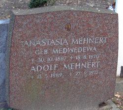 Adolf Mehnert