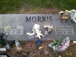 Nannie Jeanette Jean <i>Hall</i> Morris