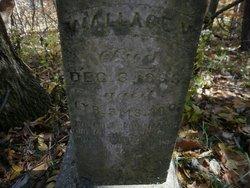 Wallace V. Bowers