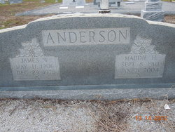 James W Anderson