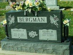 Herbert R Bergman
