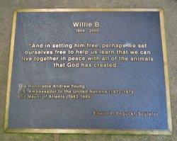 Willie B