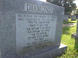 Tzivia <i>Suttleman</i> Diamant