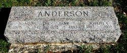 Jane Anderson