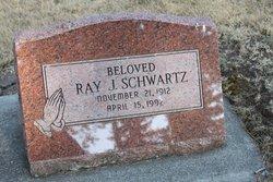 Ray Jacob Schwartz
