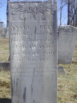 Ansel A. Burr