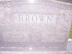 Harvey Thomas Brown