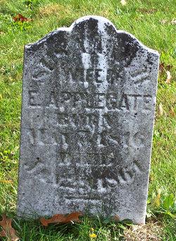 Susannah Applegate