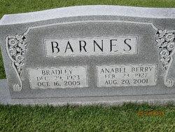 Bradley Barnes