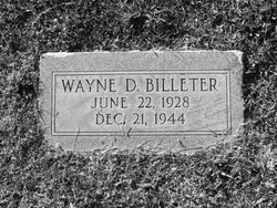 Wayne David Billeter