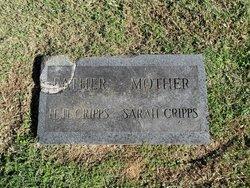 Sarah <i>Etheridge</i> Cripps