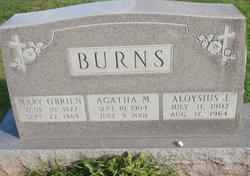 Aloysius J Burns