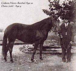 Gideon Henry Barthel
