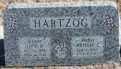 Effie B <i>Raridon</i> Hartzog