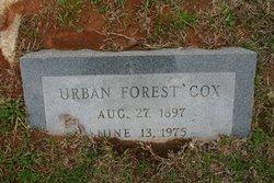 Urban Forest Cox