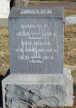 Ann <i>Hillis</i> Ball