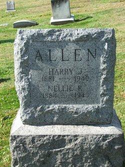 Nellie Green <i>Kipp</i> Allen