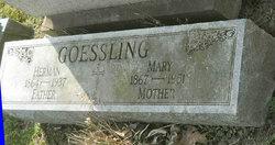 Anna Marie Mary <i>Lovy</i> Goessling
