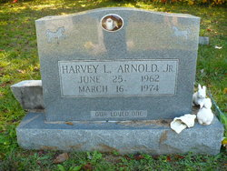 Harvey L Arnold, Jr