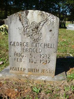 George Mitchell Arnold