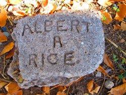 Albert A. Rice
