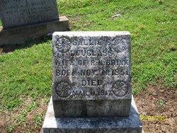 Sallie E <i>Douglass</i> Brink