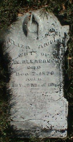 Eliza Ann Allabaugh