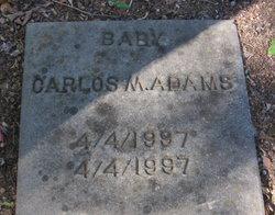 Carlos M Adams