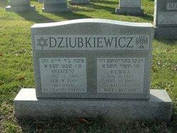 Rywka Dziubkiewicz