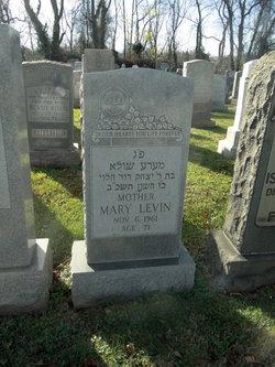 Mary Levin