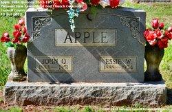 John Quincey Apple
