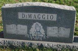 Guy J. DiMaggio