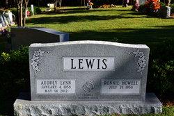 Audrey Lynn <i>Wilson</i> Lewis
