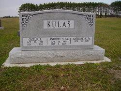 Anthony V Kulas, Sr