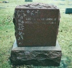 Lucy Ann <i>Lawless</i> Dearhammer