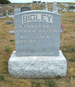 Alexander Bigley