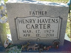 Henry Havens Carter
