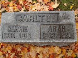 Arah A Carlton