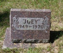 Joseph H Joey Anderson