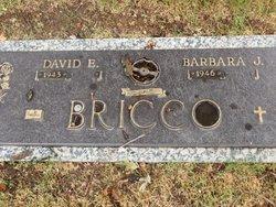 Barbara J Bricco