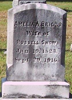 Amelia A <i>Briggs</i> Snow